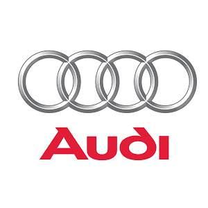 Audi car battery